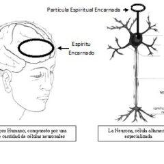 ¿En Que Dimensión se Encuentran los Espíritus y Partículas Encarnadas?
